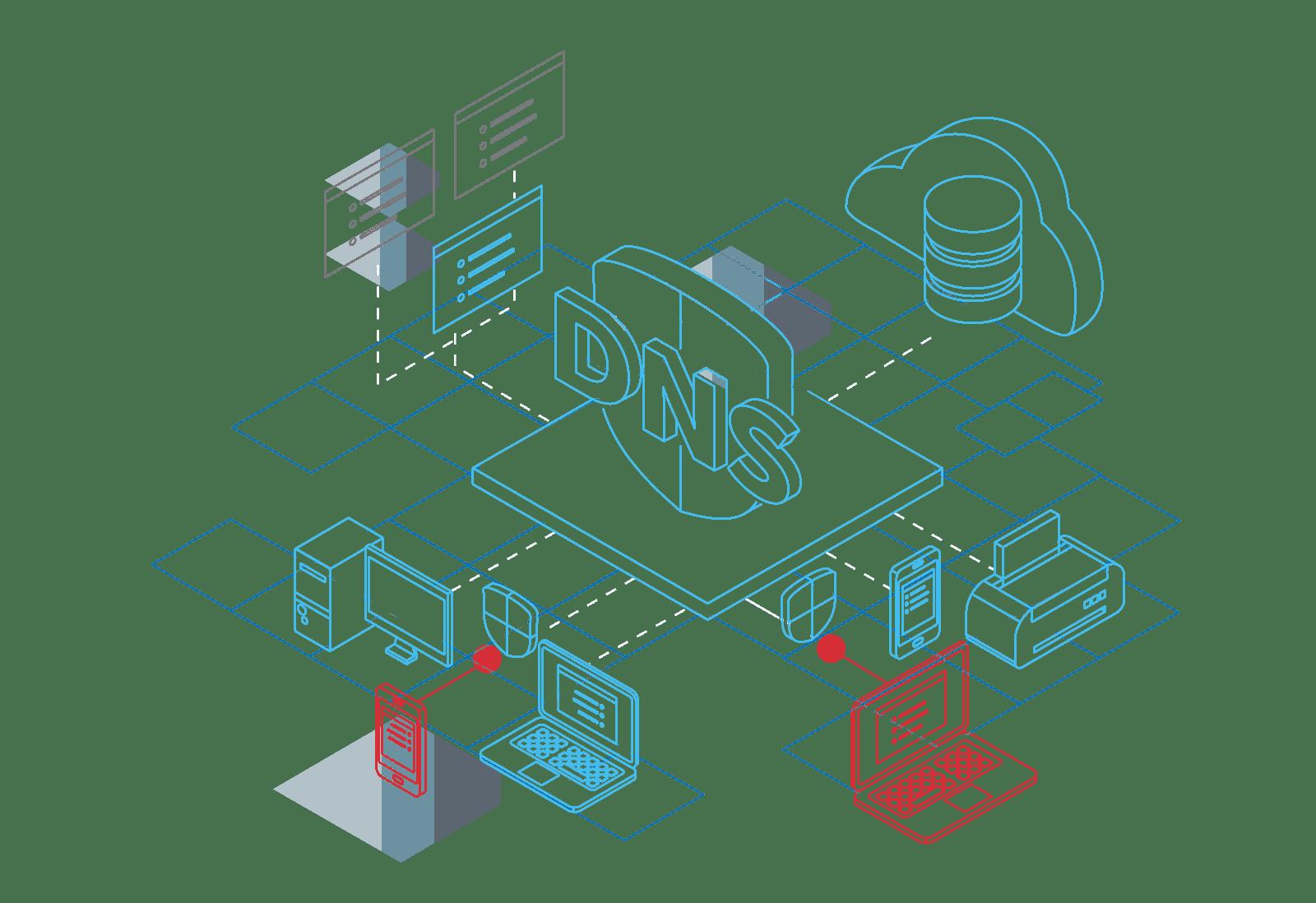 BlueCat - Sample Illustration