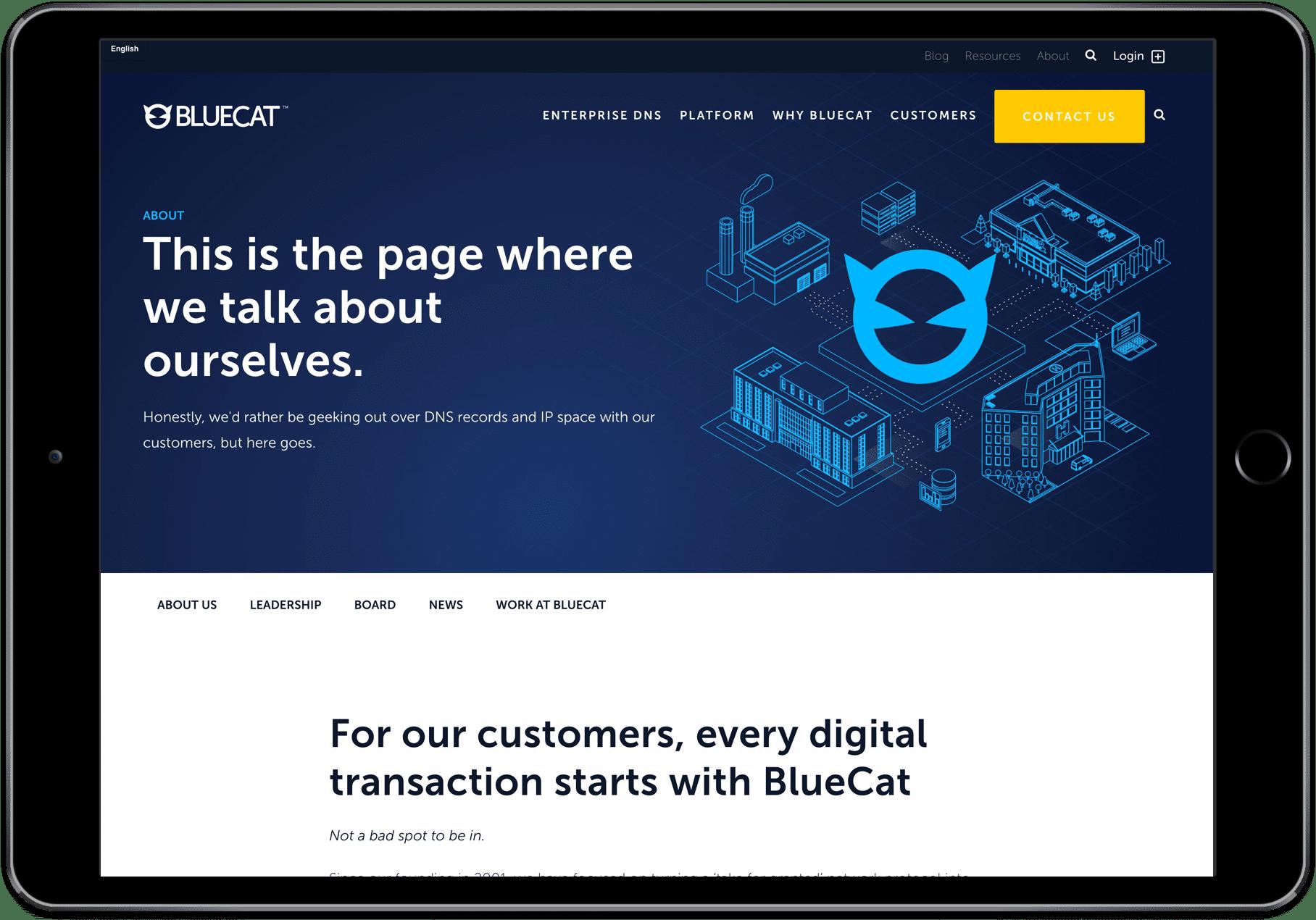 BlueCat - iPad design